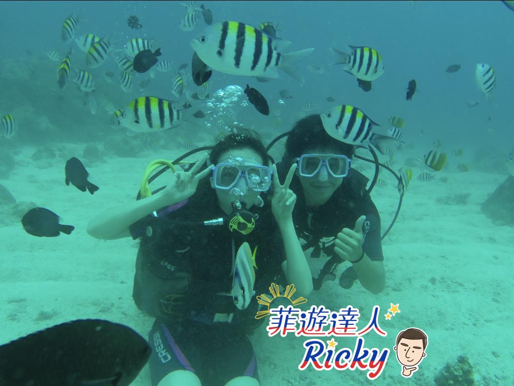 菲律賓潛水